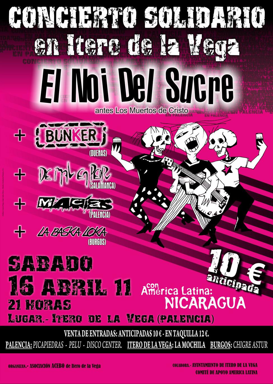 Concierto Solidario 2011